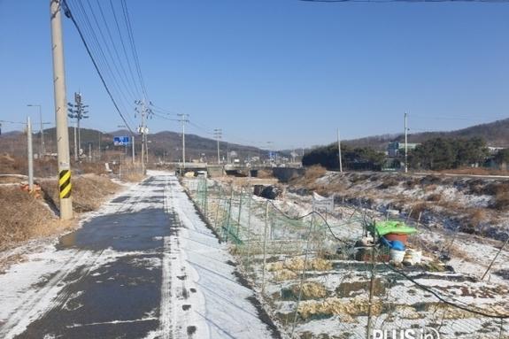 용인시 처인구, 경안천·완장천 내 불법경작 집중 단속